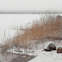 "photo ""Peno Lake in warm January (2)"""