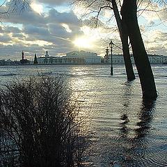 "photo ""Flood in SPb 2"""
