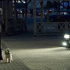 """фото """"Прогулка  вечером"""""""