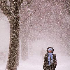 "photo ""Одна в снегопад"""