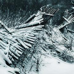 """фото """"Зима ломает все заслоны..."""""""