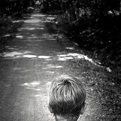 """фото """"Walk of life 2"""""""