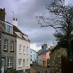 "album ""Alderney environment"""