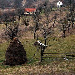 "фото ""By dam Sopot"""