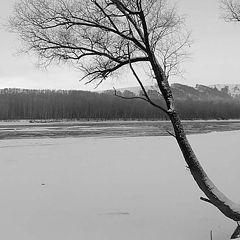 """фото """"Одинокий"""""""