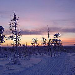 """фото """"Вечерняя лыжня"""""""