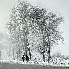 "фото ""дорога тумана и великаны"""