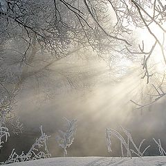 "фото ""Нереальная зима."""