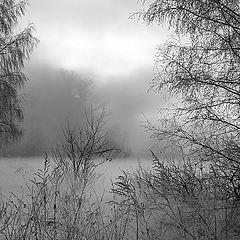 """фото """"Увидеть зимние туманы."""""""