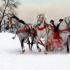 "фото ""Три белых коня"""