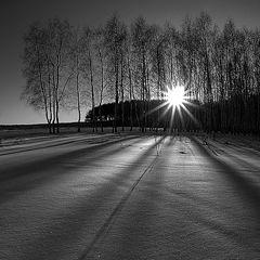 """фото """"про зимние тени..."""""""