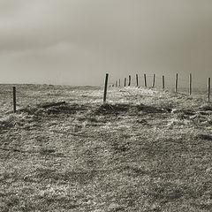 """фото """"Empty land"""""""