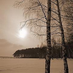 """фото """"зимняя меланхолия"""""""