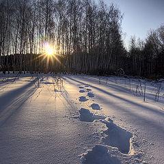 "фото ""Провожать солнце..."""