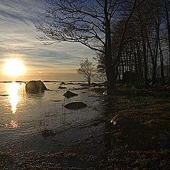 """фото """"Sunstroke"""""""