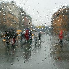 """фото """"В Петербурге сегодня дожди"""""""