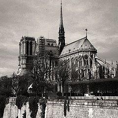 "фото ""Paris flashback."""