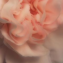 """фото """"Love is..."""""""