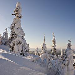 """фото """"Снеговорот / 167_0076"""""""