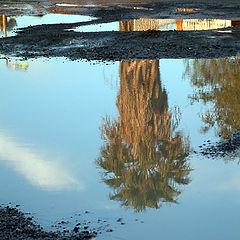 """фото """"Reflects.."""""""
