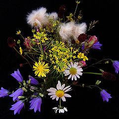 """фото """"Букетик таёжных цветов"""""""