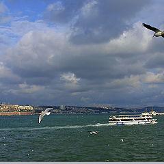 "фотоальбом ""My Istanbul"""