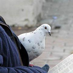 "фото ""Святой дух"""