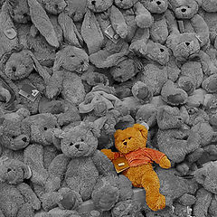"фото ""Teddy bears"""