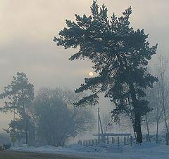 """фото """"Последние зимние туманы."""""""