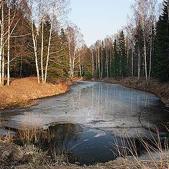 "photo ""Pavlovsk (repost)"""