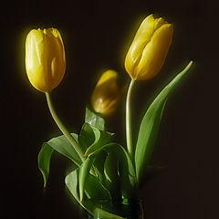 """фото """"желтые фонарики"""""""