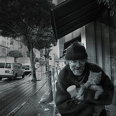 """фото """"""""..еeх, жизнь собачья, то есть кошачья.."""" или """"нам бы доллар в стаканчик, сэр"""""""""""