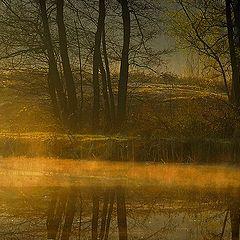 "фото ""thoughtful morning"""
