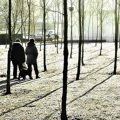"""фото """"прогулка в парке"""""""