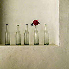 "фото ""Bottles on the wall"""