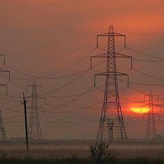 "фото ""Morning Power"""