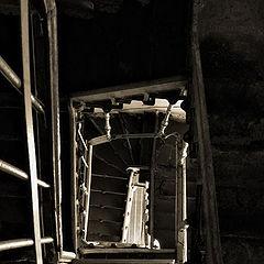 "album ""Про лестницы/ about stairs"""