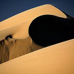 """фото """"Dunes 2"""""""