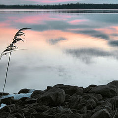 "фото ""Spring Dawn on Georgian Bay"""