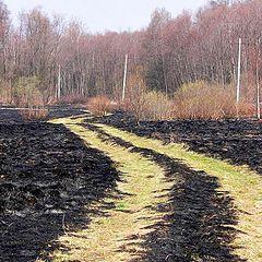 """фото """"После пожара"""""""