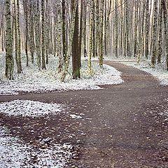 "фото ""Другое время. Зима"""