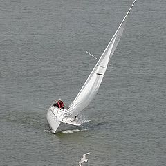 """фото """"Sailing ...."""""""