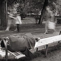 """фото """"Горькие сны"""""""