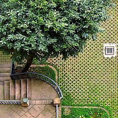 "фото ""A Courtyard in Milan"""