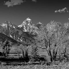 "photo ""Grand Teton"""