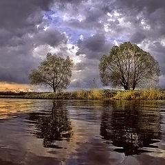 """фото """"Перед майским ливнем"""""""