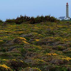 "фото ""Lighthouse and moor"""