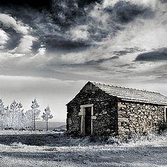 "фото ""Lost land"""
