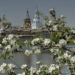 "фото ""Весна в Измайловском парке"""
