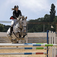 "фото ""26118 Flight on a white horse"""